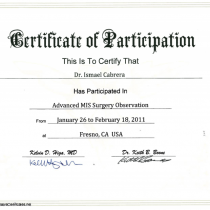 Dr. Ismael Cabrera Garcia – Certificate of Participation – Advanced MIS Surgery Observation